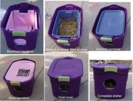 Feral/Stray Cat Shelter