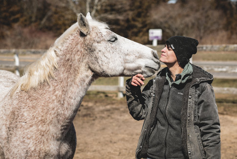 Jenna Marie Townsend - JMT Equine Holistic Solutions