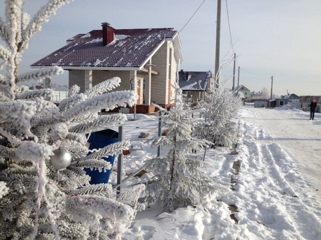 первые зимы