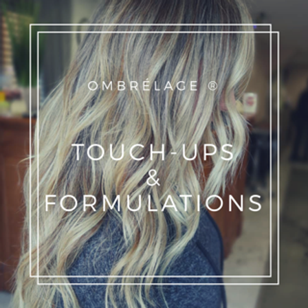 Ombrélage® - Part 2 - TOUCH-UPS & FORMULATIONS - In Person Real Time Client