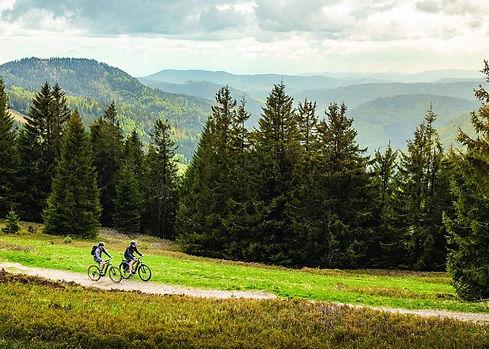 Bike%20Kreischberg%20Gr%C3%BCne%20Berge_