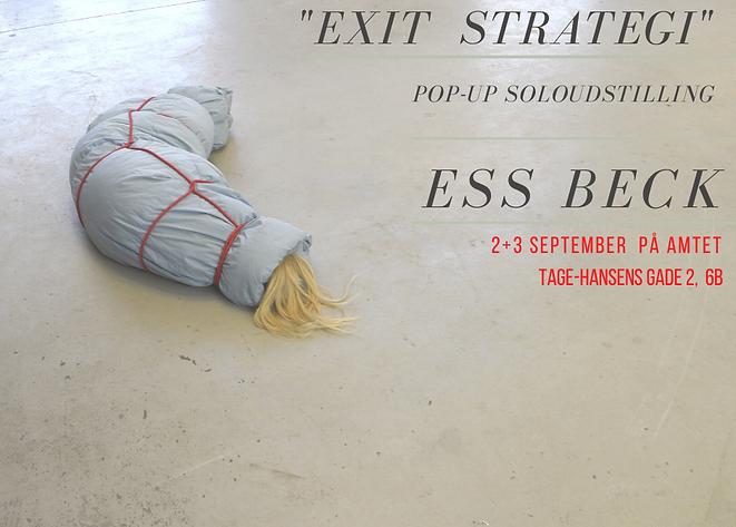 EXit Strategi-3.png