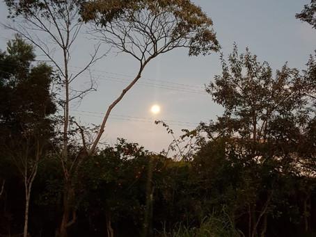 Um pouco sobre a magia da Lua Cheia