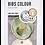 Thumbnail: Set suzete Bibs - sage & ivory