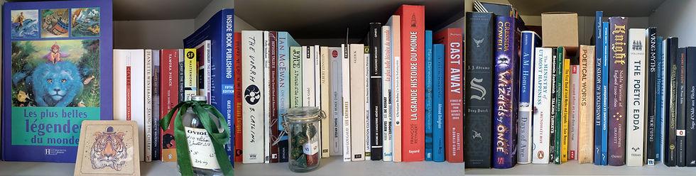 mybookshelf2.jpg