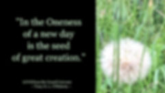Tracy O'Flaherty - Meme - Oneness