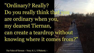 Tracy O'Flaherty - Meme - Tiernan