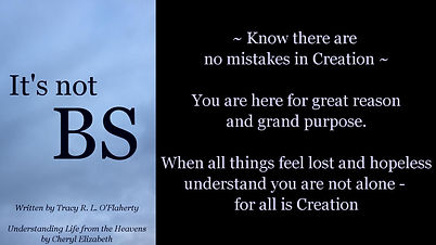 Tracy O'Flaherty - Meme - It's not BS - No Mistakes in Creation