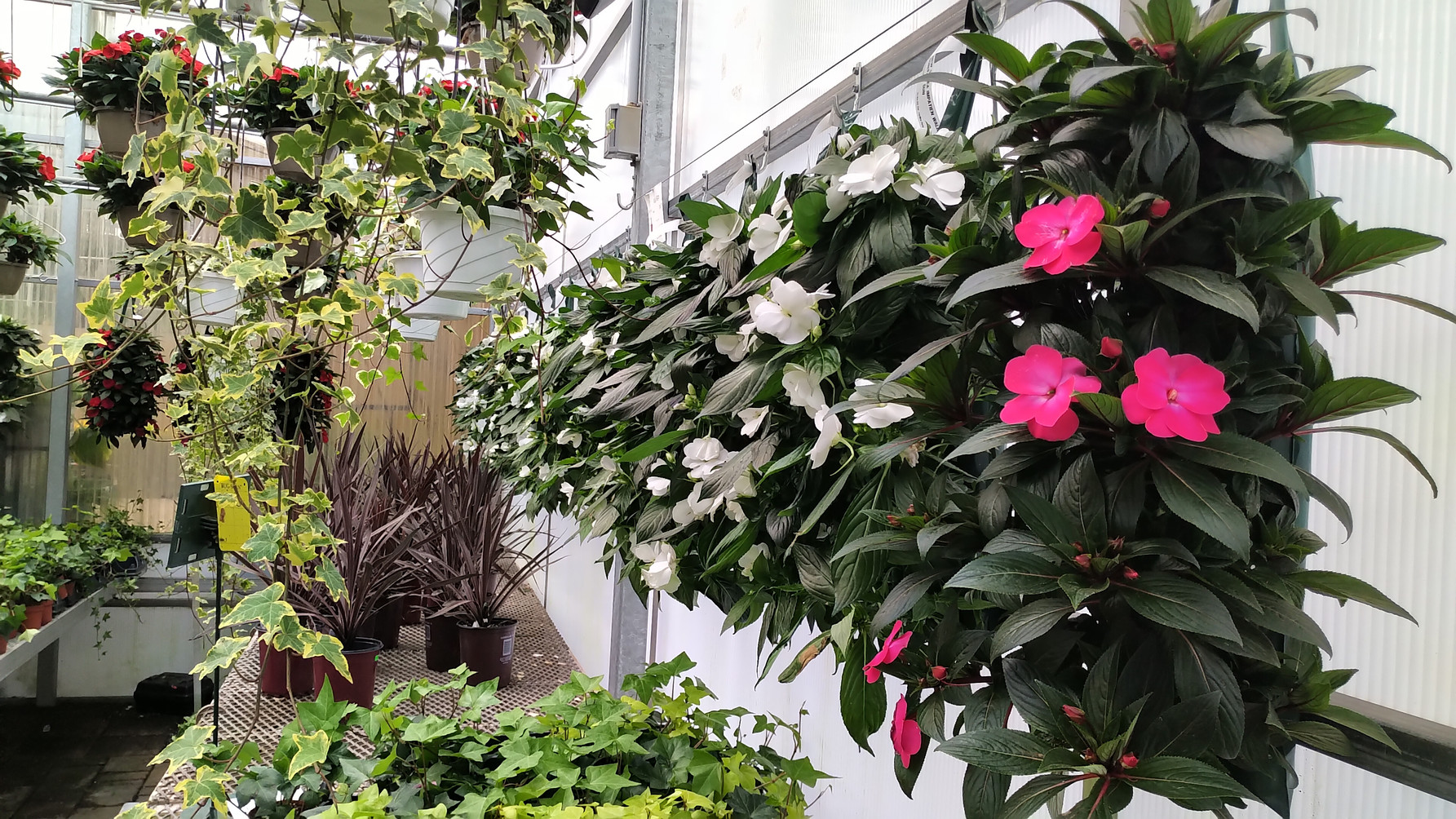Optimizing space @ Woodhill Garden Centre