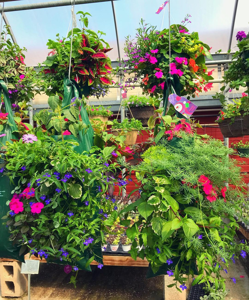 Mixed pouches - something for everyone! @ Wayne's Daughters Farm & Greenhouse