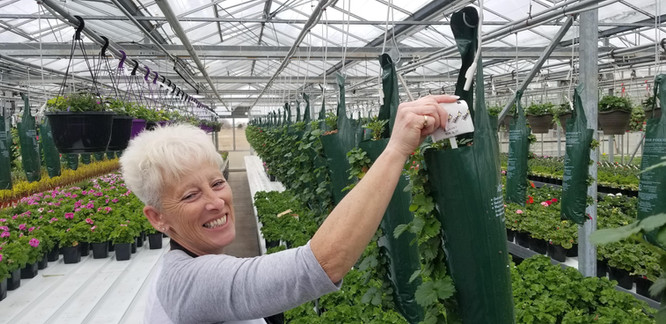 Strawberries make everyone smile @ Thiel's Greenhouses