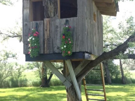 Spruce up your treehouses