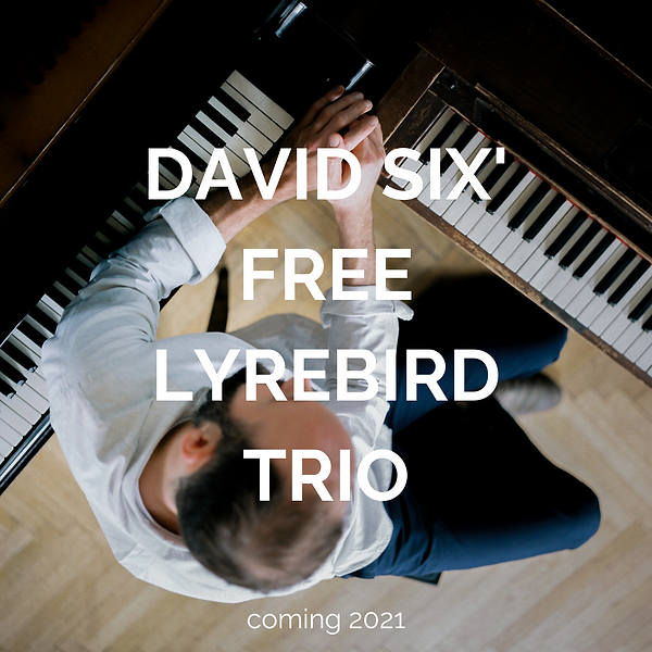 DAVID SIX' FREE LYREBIRD TRIO.png
