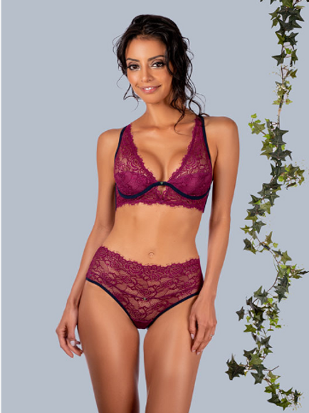 CLO-SELVA-HIGH WAISTED BRIEF-PURPLE POTION