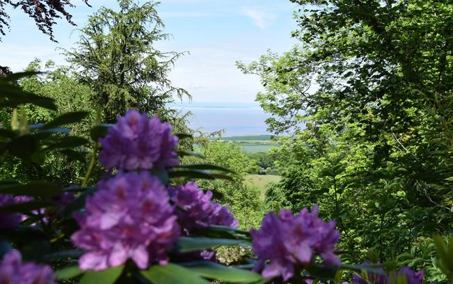 view to coast.jpg