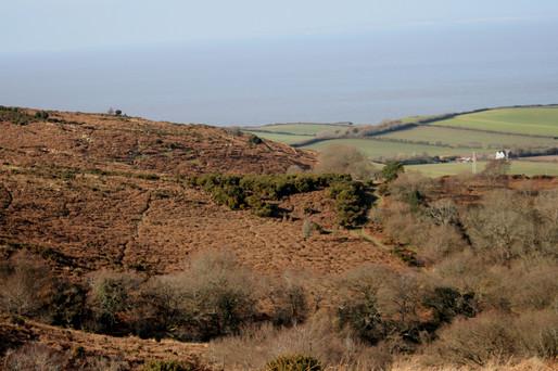 hill1.jpg