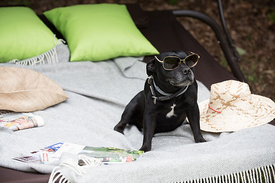 2-hot-tub-coleridge-luxury-dog-friendly-