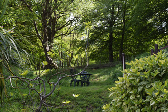 Rural country cottages near the sea dog friendly