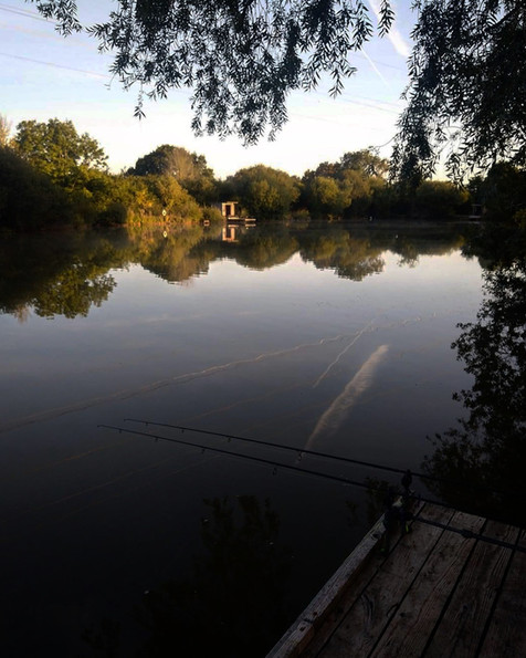 Follyfoot Fishery, Carp Fishery in North Petherton, Somerset