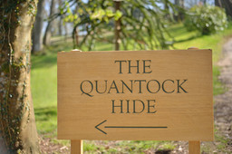 The Quantock Hide
