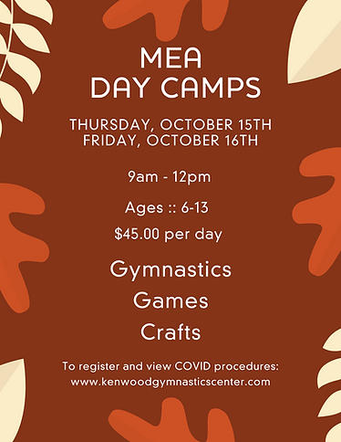 MEA Day Camps (1).png