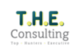 Logo novo - THE CONSULTING-color_fb_web.