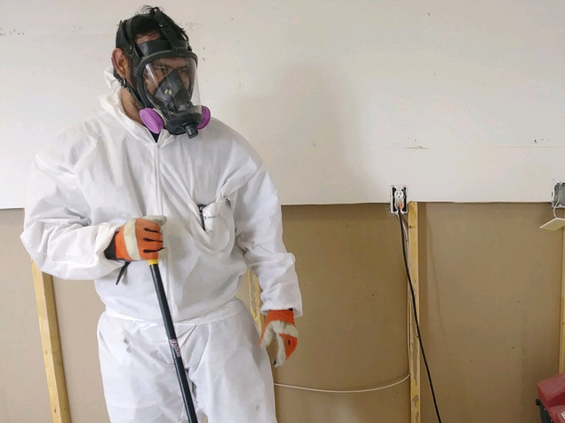 mold remediation.jpg