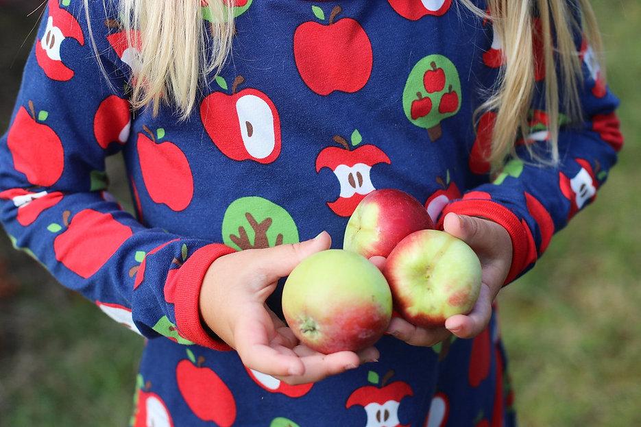 tossegris_apple_17.jpg