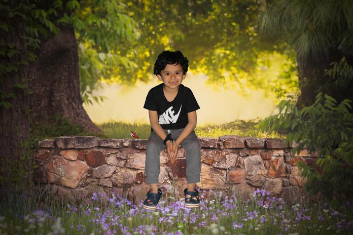 SpringStoneWall.jpg
