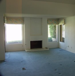 Living Room & View - BEFORE