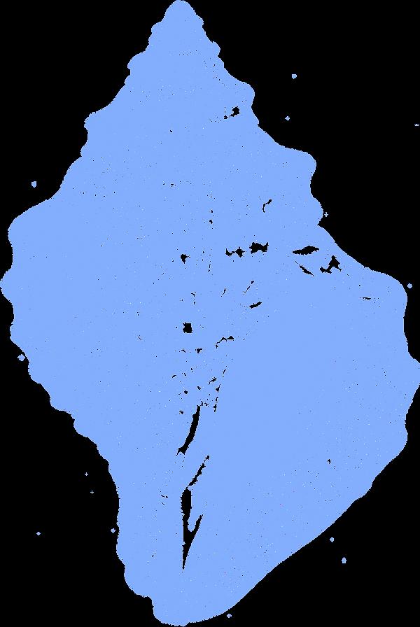 62035_chrysodomus.png