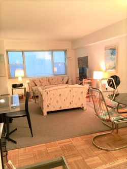 A. Living Area