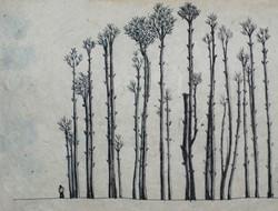 2013-01_trees