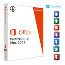Office Professionnel Plus 2019 OEM PC