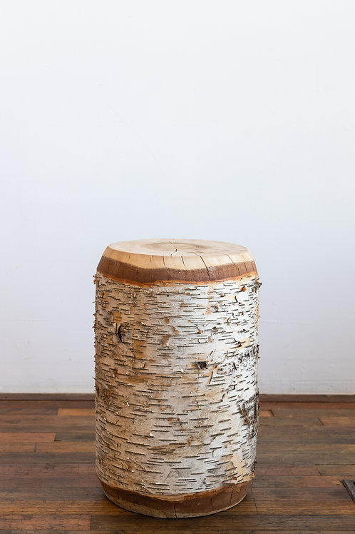 Birch Side Table Log