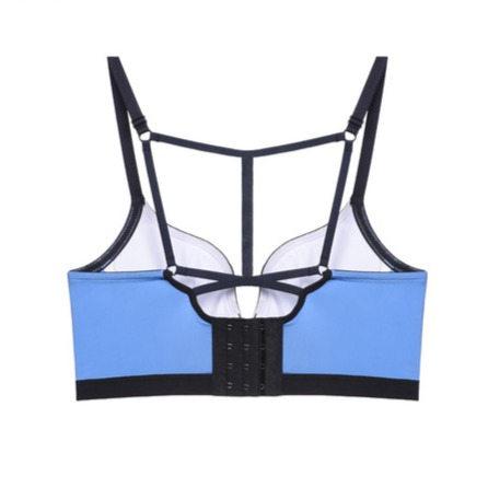 longlined bra back