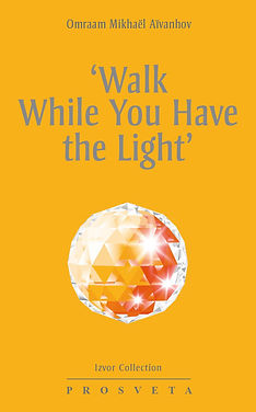 Walk While You Have The Light.jpg