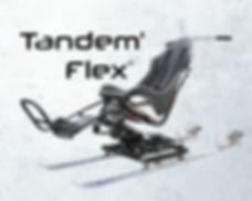 TandemFlex.jpg