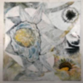 5 Sunflower Disection.jpeg