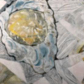 5 Sunflower DisectionB.jpeg