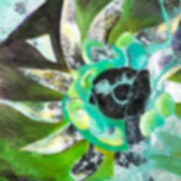 4 Sunflower DisectionB.jpeg