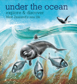 Under the Ocean Cover