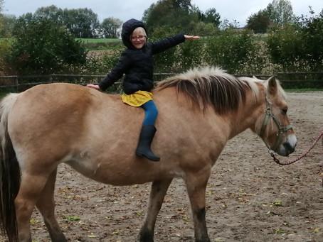 Atelier cheval des Coccillons