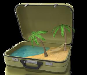 valise plage