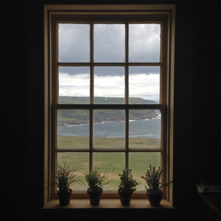 Taking in the Nova Scotia view