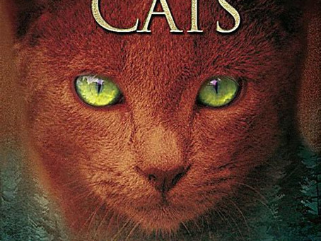 [Reihenvorstellung] Warrior Cats 1. Staffel