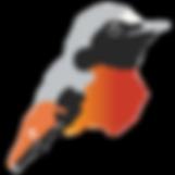 Redstartbirdsmall_edited_edited.png