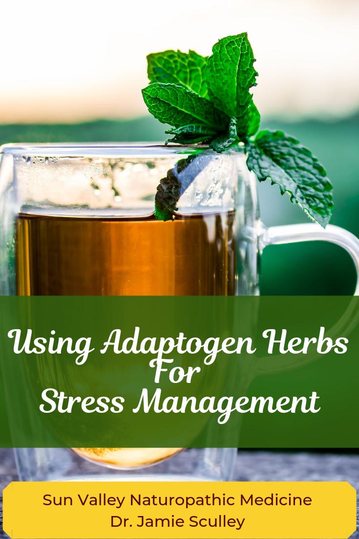 adaptogen herbs for stress, naturopathic medicine