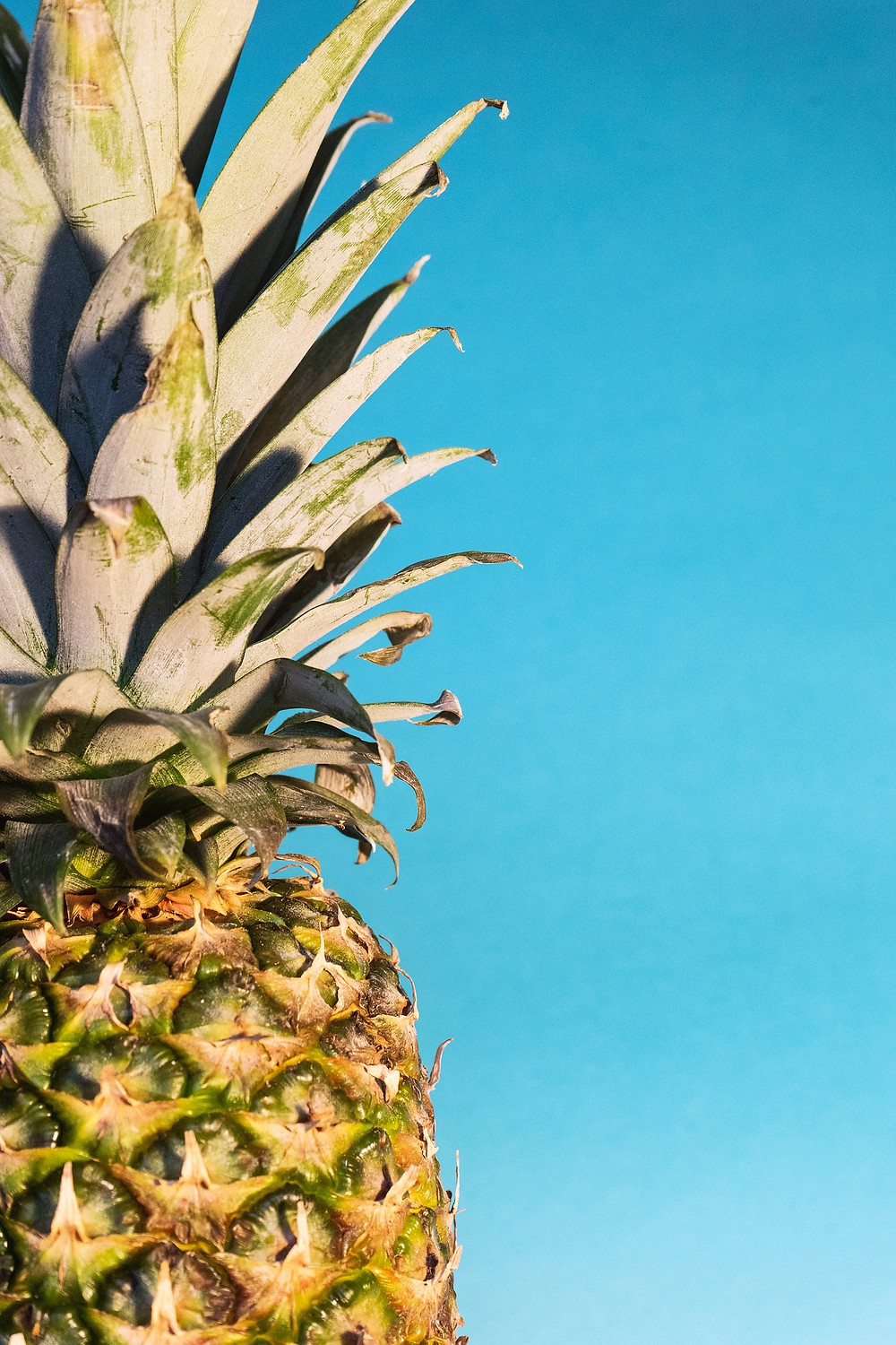 bromelain from pineapple is a potent naturopathic anti-inflammatory herbal compound