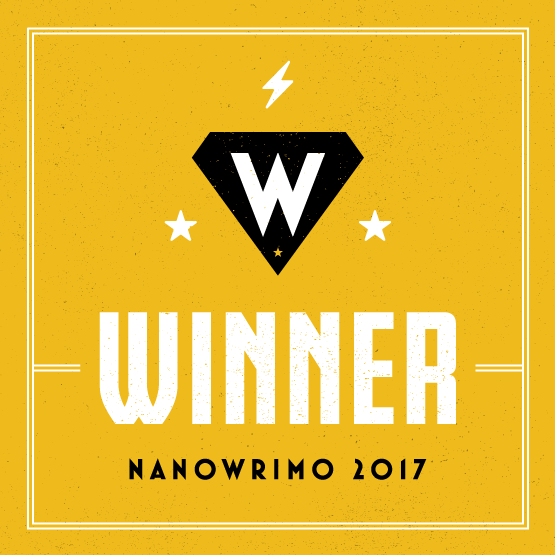NaNoWriMo 2017 Winner